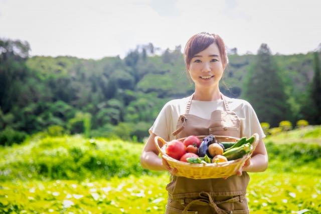 田舎で野菜作り