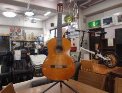 クラシックギター CG142C ヤマハ